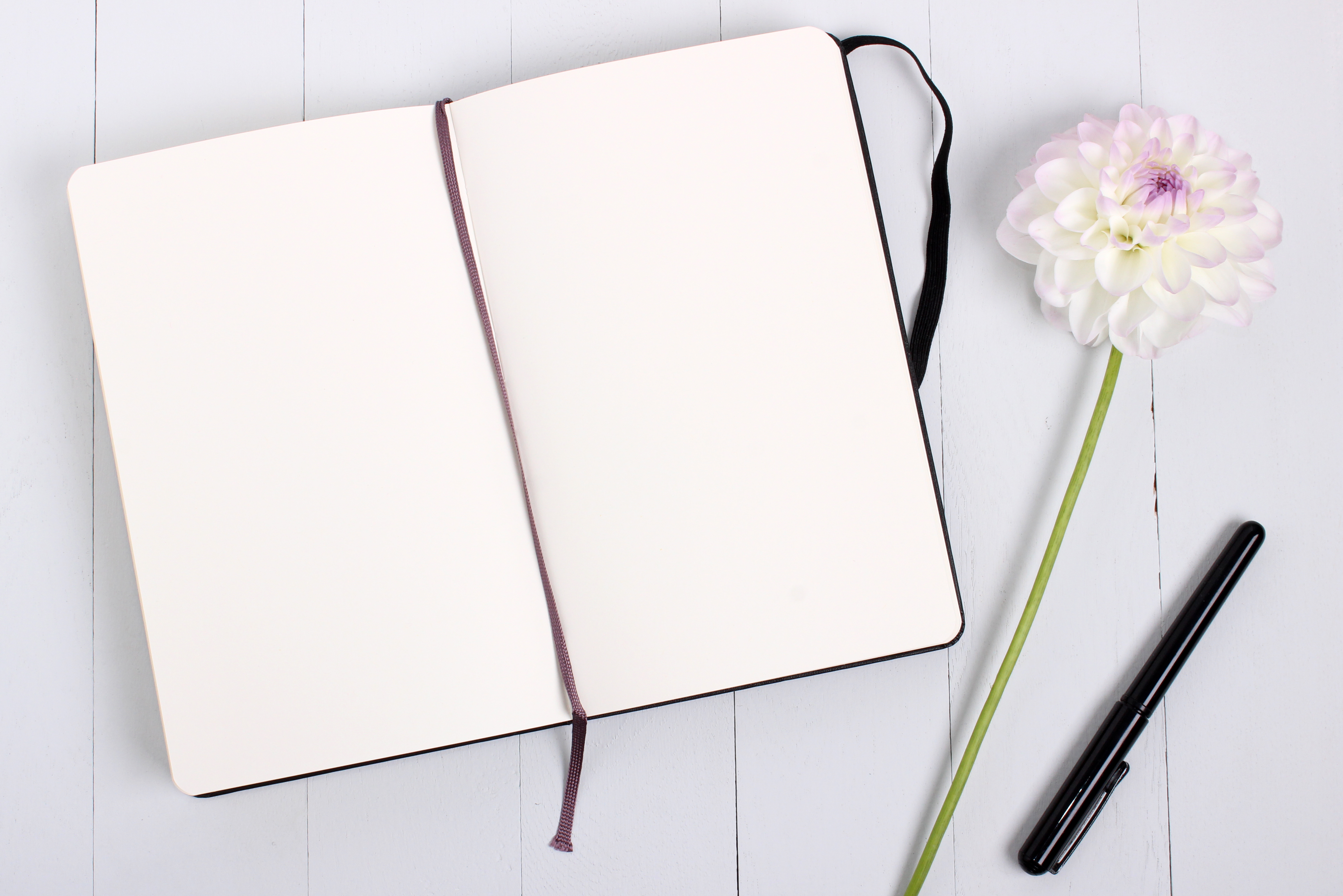 Canva - Notebook And Black Ballpoint Pen
